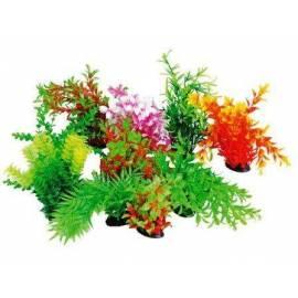 Tropical Plants 22-25cm