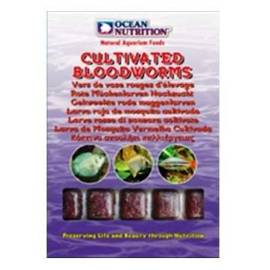 Ocean Nutrition Cultivated Bloodworms