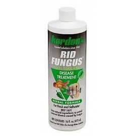 Kordon Rid Fungus