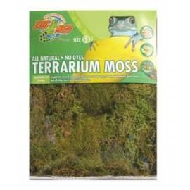 Zoomed Terrarium Moss